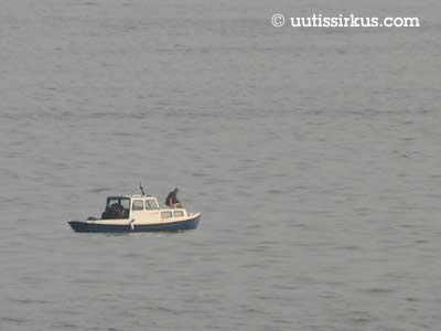 pienven keinuu Suomenlahden aalloilla