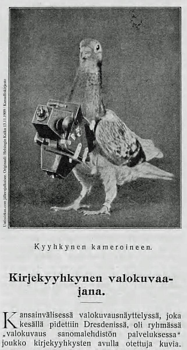 Kyyhkynen kameroineen Helsingin Kaiku -lehden valokuvassa 13.11.1909