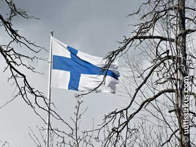 Suomen lippu liehuu kelopuun katveessa