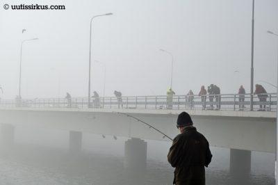 onkijoita sumuisella Lauttasaren sillalla