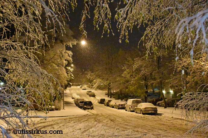 lunta sataa hiljalleen, muutama auto kadun varressa