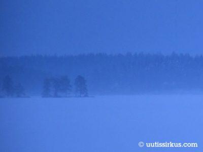 sininen hetki: lumen peittämän järven laidassa tummaa havumetsää