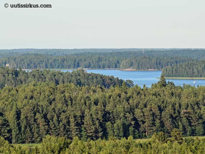 metsää ja vesistöä kaukaa katsottuna