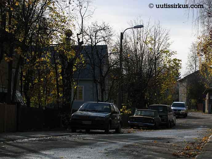 vanhahkoja autoja kadun varressa syksyisten lehtien keskellä